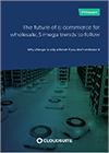 e-commerce voor de groothandel